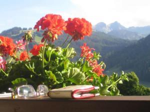 #Gstaad #Summer #sportmoneeontour #travellingwallet